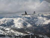 Ventus20im20Flug3-ae380bfc